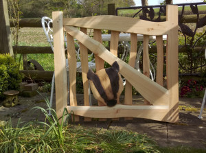 Cedar Badger Gate