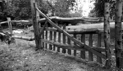 Paddock gate in cleft sweet chestnut with cleft chestnut fence