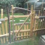 Cleft chestut chicken run gate